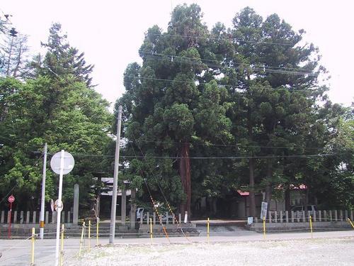 八角神社の森