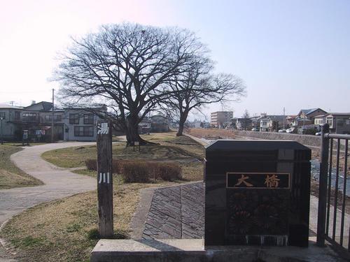 湯川 大橋 エノキ
